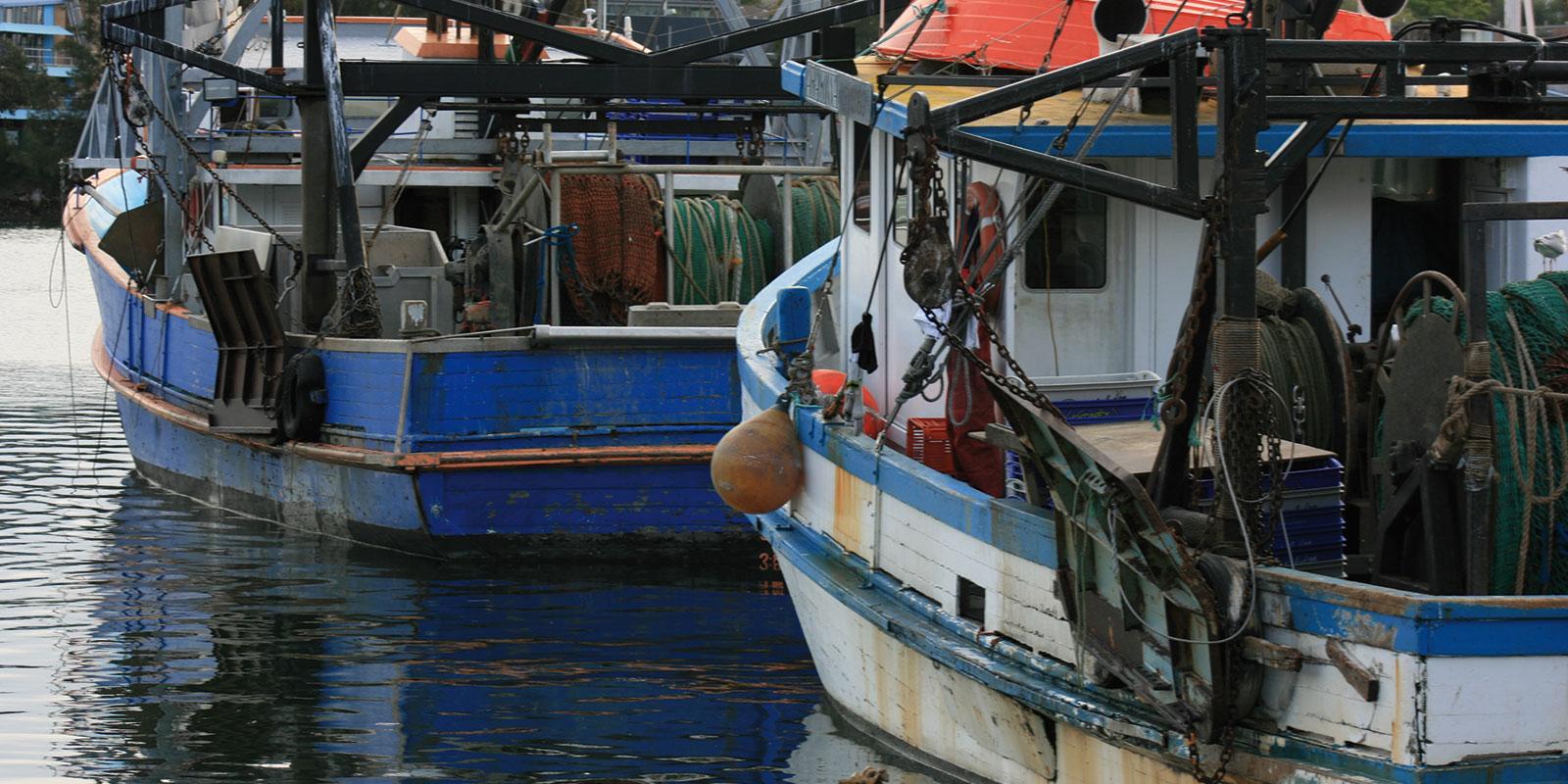 Fish Markets, boats, Sydney