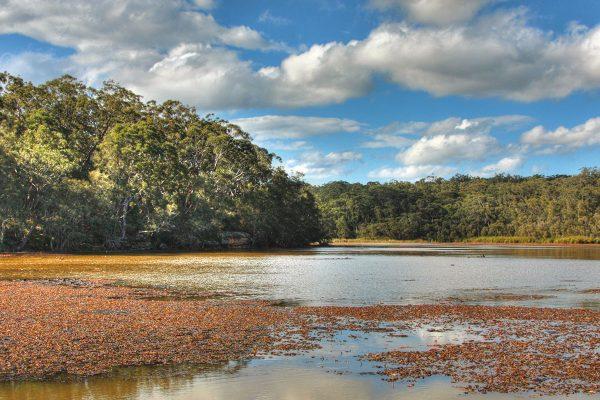Picnic_Point_Yeramba_Lagoon by Adam.J.W.C.