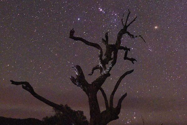Night sky, Wee Jasper, Australia, 2015
